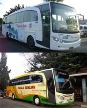 Terbesar Bus Dari Jakarta Ke Probolinggo Harga Mulai Dari
