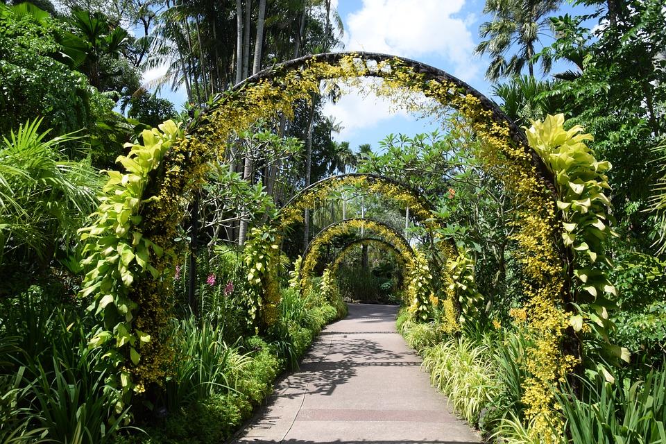 Tour singapore botanic gardens for Home garden design singapore